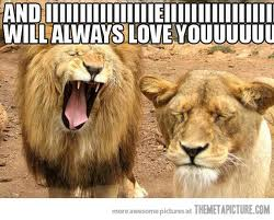 lion singing whitney houston