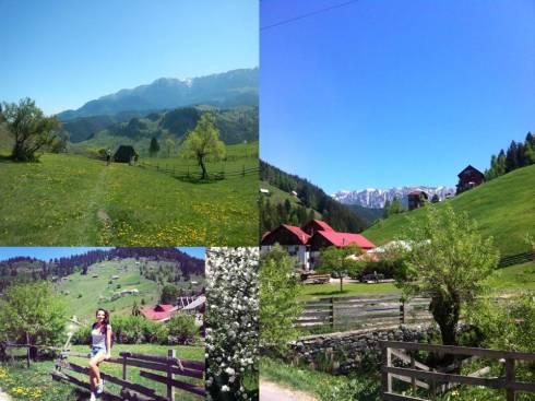 Moeciu race, beautiful mountains